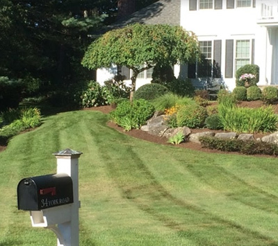 Landscape Maintenance Company in Norfolk, MA | Ten Four LLC - landscape-maintenance-service