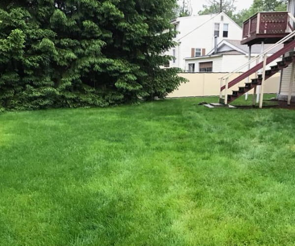 Landscape Maintenance Company in Norfolk, MA | Ten Four LLC - asset-3